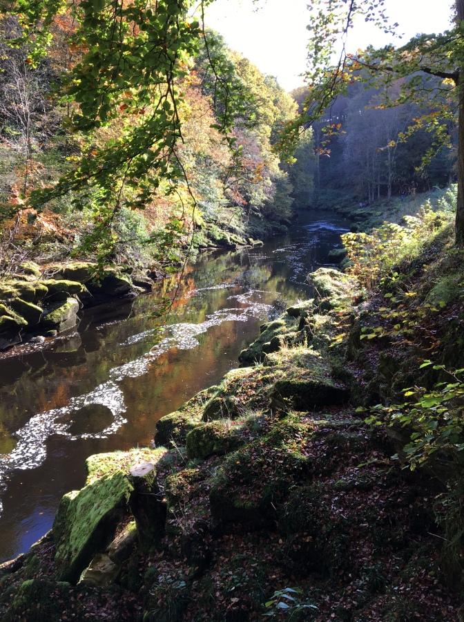 Bolton Abbey Halloween Trail